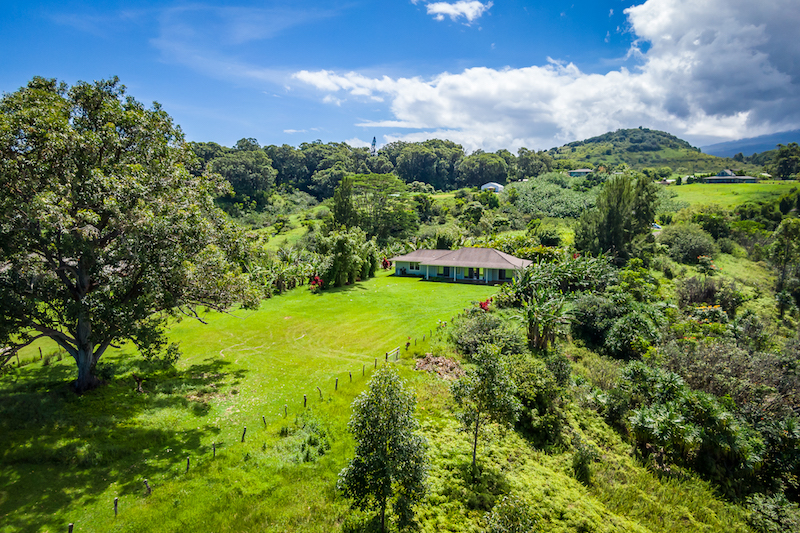 908 hoomalolo has a fully fenced large. a neighboring gulch provides privacy